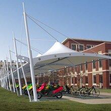 自行车棚-景观张拉膜-停车棚-膜结构看台-充电桩雨棚图片