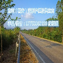 聊城护栏板厂家、锦州道路防撞板、蚌埠二波护栏板