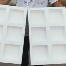 包装免模成型设备自动送料切割挖孔设备图片