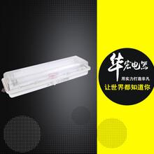BAY51防爆防腐全塑荧光灯(LED)