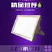 BAD808-L2(200W)LED防爆灯防爆路灯灯头