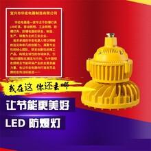BAD808-M四川LED防爆吊杆灯护栏LED防爆灯