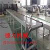 不銹鋼提升鏈板輸送機