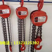 微型钢丝绳电动葫芦那家品牌质量好pa200pa400