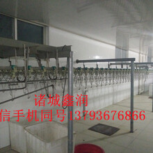 鸡鸭鹅屠宰流水线生产厂家诸城鑫润