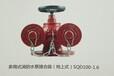 新式消防地上水泵接合器100