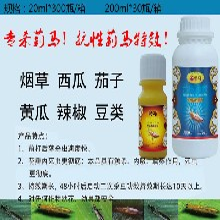 厂家批发--金特马--黄瓜黑蓟马黄蓟马特效--杀虫剂--0.2%苦皮藤素图片