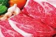 青岛进口澳大利亚冷冻猪肉报关申报要素资料