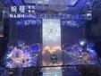 福田区岗边村提供婚礼摄影摄像,婚礼跟拍,婚礼策划,婚礼场地布置图片