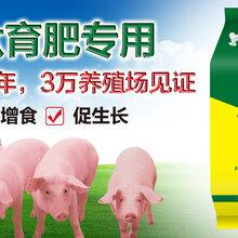 猪用催肥添加剂那个好、猪催肥添加剂什么价格图片