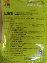 肉鸭催肥用什么药肉鸭催肥配方