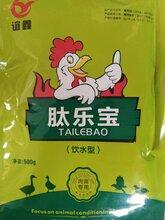 鸭子吃什么长肉快肉鸭要用催肥药吗