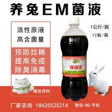养兔用的EM菌液防病促长用的益生菌怎么卖
