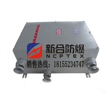 厂家直销价格防爆配电箱专业定制大小安全可靠质量一流
