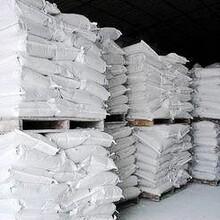 滄州熟石灰粉工業氫氧化鈣歡迎詢標圖片