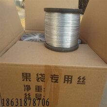 24#果袋丝热镀锌丝0.55mm镀锌丝