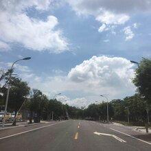 滁州天长哪里有卖-农村5.5米LED路灯价格查询