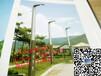 浙江嘉興南湖區LED太陽能路燈特價批發