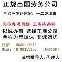 劳务派遣不限男女包食宿华人企业工作签月薪3万起再不努力就老了
