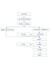 青岛太阳线直销软件太阳线直销管理系统太阳线极差管理系统