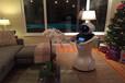 杭州機器人租賃出租定制跳舞機器人畫畫機器人迎賓機器人