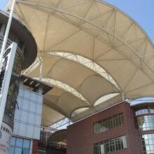 膜结构停车棚张拉膜车棚汽车遮阳棚膜结构自行车雨棚