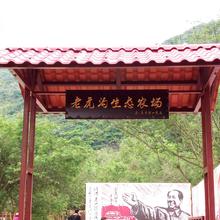 老虎沟生态农庄深圳农家乐登山,野炊,保龄球