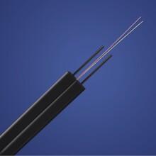 供应普天GJXH-2B1金属碟形光缆