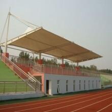 学校主席台膜结构-学校运动场钢膜结构-膜结构主席台设计图纸-主席台钢索膜结构雨棚