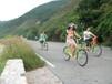 杨梅坑农家乐野炊,单车,游艇出海活动一天游