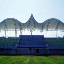 游泳馆遮阳膜布批发加工安装、运动健身场所景观膜结构设计制作
