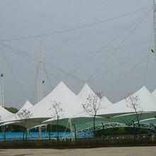 镇江棚发膜结构景观棚膜结构遮阳棚安装生产厂家