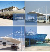 膜材加工安装厂家直销定制张拉膜膜结构停车棚