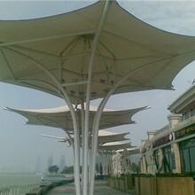 膜结构遮阳伞膜结构景观伞张拉膜景观伞别墅膜结构景观伞