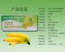 香蕉催熟剂0.6克装金亮香蕉专用催熟剂