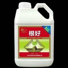 旺润厂家直销有机肥,水溶肥,矿物肥