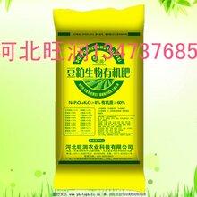 河北旺润有机菌肥厂家