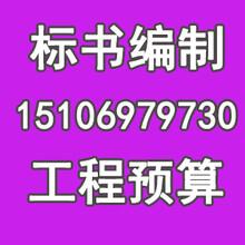 湛江便宜做标书-概念性规划设计图片