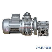 UDL0.55-RV63组合型蜗杆减速机可调速图片