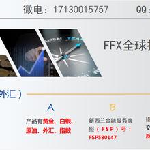 FFX总部招商会员单位