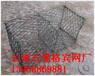 云南河堤石笼网-石笼网价格低,发货及时