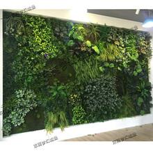 仿真植物墙花墙
