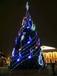 圣诞树全国销售厂家热销中