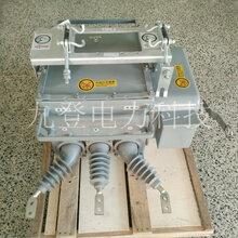 ZW20-12/630A户外高压真空断路器智能型