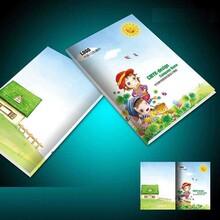 設計宣傳畫冊,銅板紙畫冊訂做,印刷說明書,產品目錄冊定做圖片