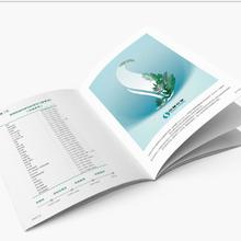 畫冊宣傳冊設計,羅湖學校校報設計圖片