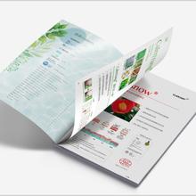 宣傳畫冊設計印刷教育機構教材排版設計,寶安雜志設計圖片
