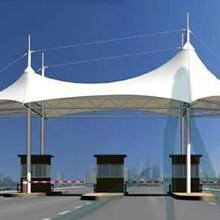 设计安装膜结构交通设施高速收费站膜结构厂家定制安装户外大型膜结构伞价格低