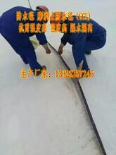 防水毯价格孟东森游戏主管优质膨润土防水毯图片