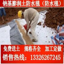 郑东森游戏主管防水毯_厂东森游戏主管直销_膨润土价格图片